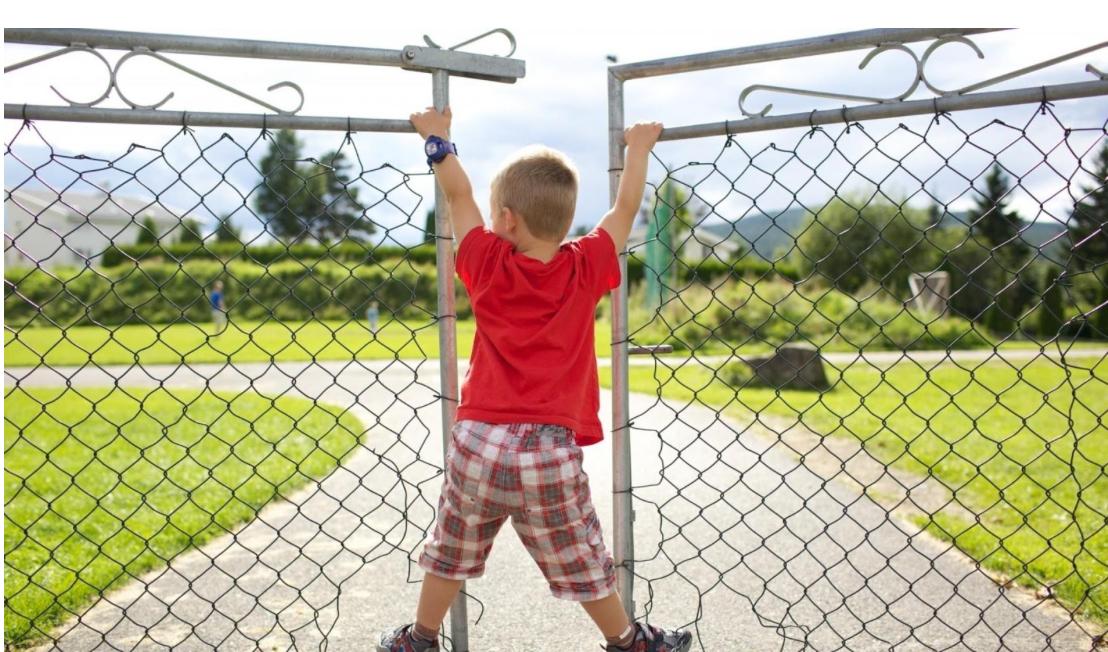 Распашные ворота и мальчик