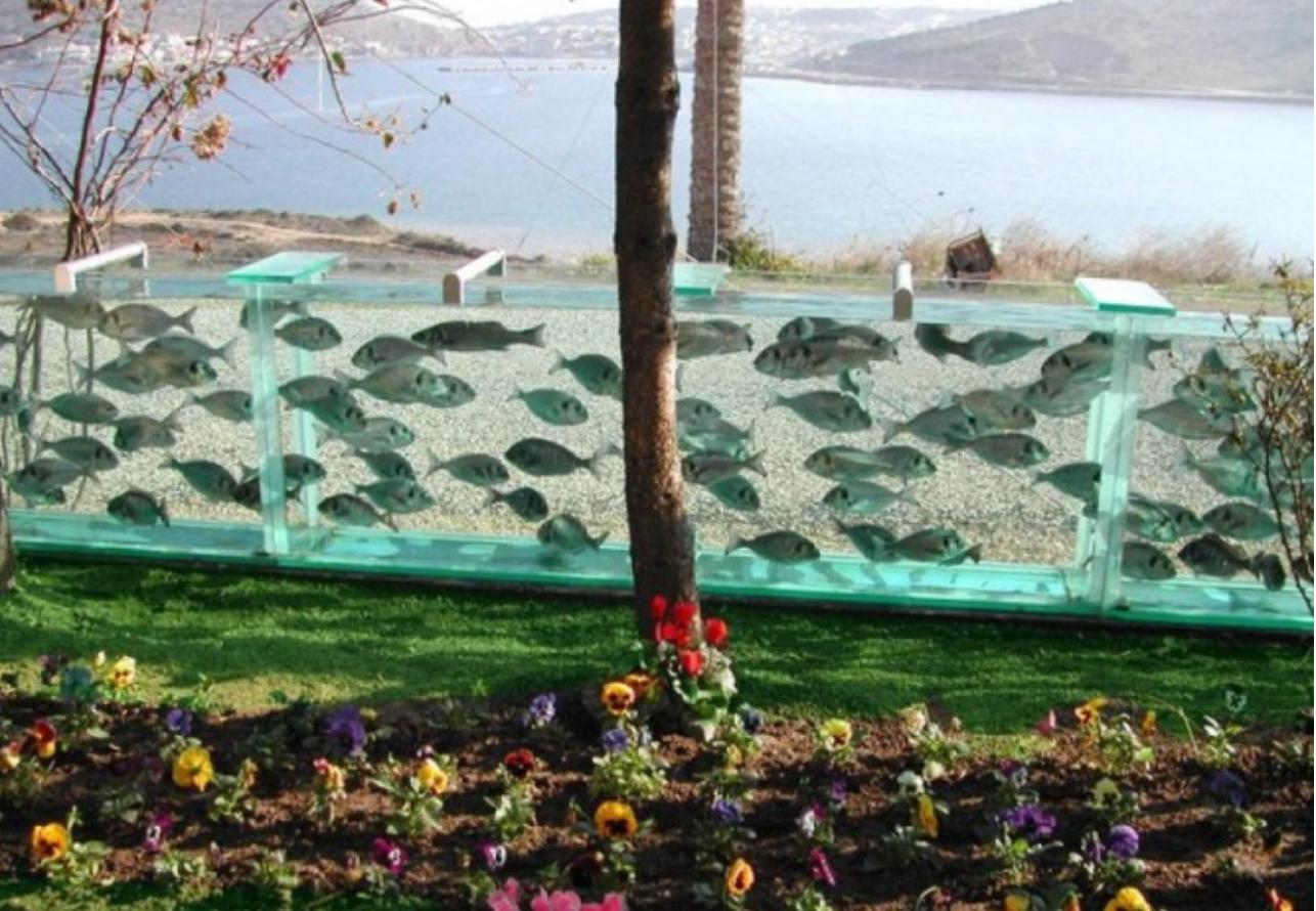 Аква забор пример фото