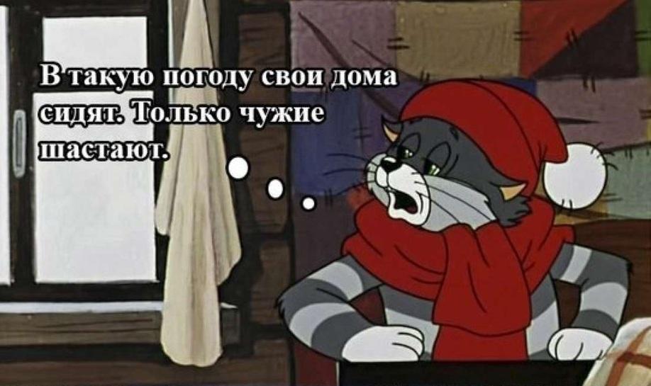 """Кадр из мультфильма """"Простоквашино"""" В такую погоду свои дома сидят"""