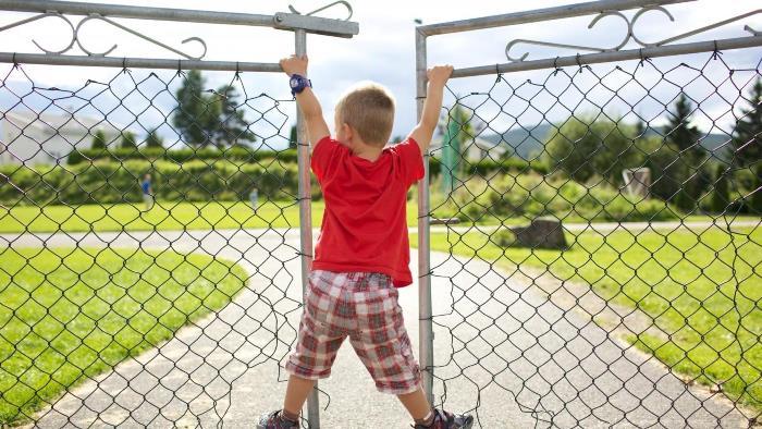 Двостулкові ворота та хлопчик