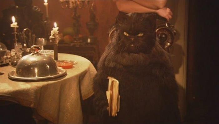 Кадр з фільму. Де сховалася чорна кішка або встановлення автоматики секційних воріт